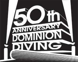 DDL 50 years in Business Logo