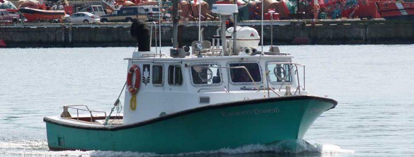 Dominion Pursuit in Halifax Harbour