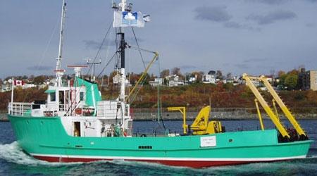 DDL's fleet of boats