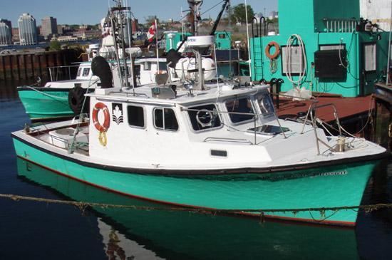 DDL Tug - Pursuit