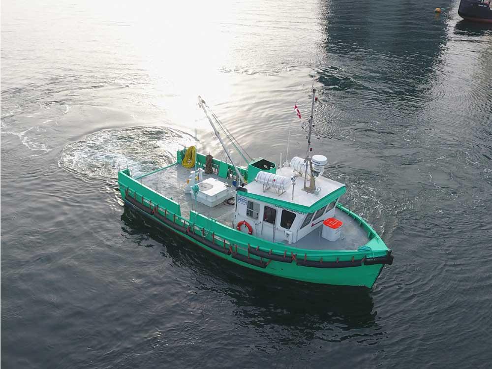 DDL Tug - Bearcat
